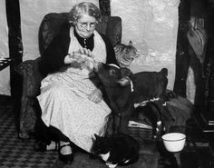 1st February 1938: An elderly woman bottle feeding a calf in her home whilst her two cats look on. (Photo by Fox Photos/Getty Images)
