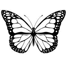 Coloriage Papillon - Les beaux dessins de Animaux à imprimer et colorier