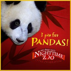 I Pin for Pandas. San Diego Zoo Nighttime Zoo: China Celebration