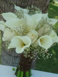 Calla Lilly with Babies Breath My bouquet only I want it wrapped with burlap and lace!