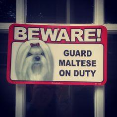 This is on my front door!