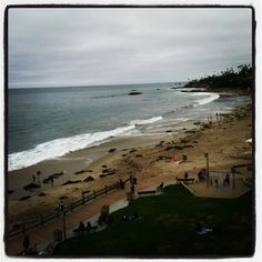 Wish I was waking up to this view again!! #alreadymissing  #hotellaguna  #beach  #cleanair  #perfectweather  #waves  #sand