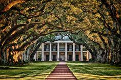 Oak Alley Plantation Google Image Result for http://photoriverblog.com/wp-content/uploads/2011/12/MG_4677_HDR-800x533.jpg