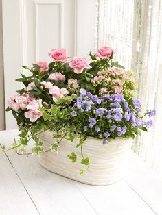 This soft washed, oval basket is filled with a beautiful mixture of flowering plants including roses, pink kalanchoe and azalea. Finished with vibrant green foliage plants, the Mixed Flowering Planter makes an ideal gift for someone special.Featuring one pink rose plant, pink kalanchoe, hedera, campanula and a pink azalea.Total height of the product planted is 31cm. Width is 30x20cm.