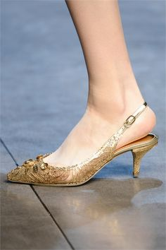 Dolce & Gabbana - Fall 2013 Ready-to-Wear - Look 86 of 127 High Heel Pumps, Dolce & Gabbana, Cute Shoes, Me Too Shoes, Dress Shoes, Shoes Heels, Flat Shoes, Kitten Heel Shoes, Embellished Shoes