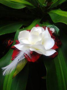 BRIDAL HAIR CLIP  Gardenia Snapdragons Feathers Hair by MalamaPua, $19.99