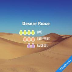 Desert Ridge - Essential Oil Diffuser Blend