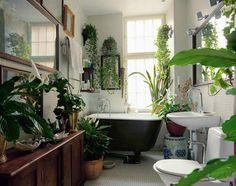 30 Rainforest Bathroom Ideas In 2020