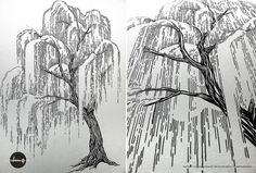 It's an oldie, but a fav - Willow tree in progress by mofdesign, via Flickr (see more at www.mofdesign.com and thanks everyone!) #illustration #art #tree #ink #drawing