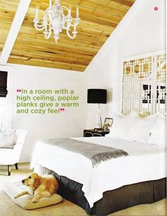 in a room with a high ceiling, poplar planks give a warm and cozy feel
