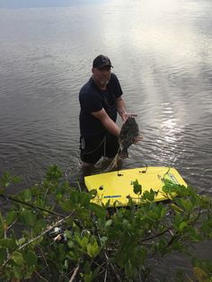 Flounder in Spruce Creek