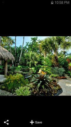Jardín tropical.