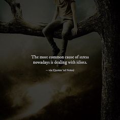 The most common cause of stress nowadays is dealing with idiots. Really Good Quotes, Amazing Quotes, Best Quotes, Annoyed Quotes, Quotes To Live By, Life Quotes, Relationship Quotes, Relationships, Stress Quotes