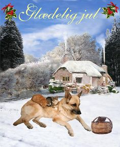 Danish - Customised Christmas Cards Fine Art America