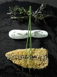 Sesame-coated mackerel, served with Fromage Frais, Honey and Cider Vinegar