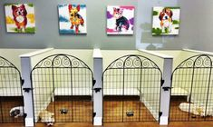 Leaving behind one's pet dog behind throughout a trip must not end up being stressful. That's why choosing a fantastic pet dog boarding facility is so. Dog Grooming Shop, Dog Grooming Salons, Dog Grooming Business, Dog Boarding Kennels, Pet Boarding, Dog Kennels, Animal Room, Dog Kennel Designs, Kennel Ideas