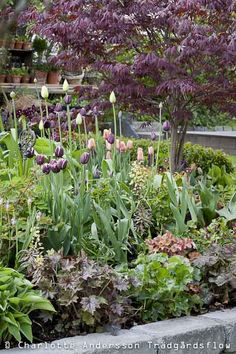 Garden Flow