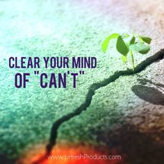 """Clear your mind of """"can't"""". Stay pHresh. #yes #ican #positive #attitude #feelgood #think #strength #courage #strong #power #motivation #inspiration #love #life #live #positivity #happiness #happy #workhard #workout #exercise #fitness #fitspo #eatclean #phreshgreens #alkalizing #superfood #healthy #healthyliving #awesome"""