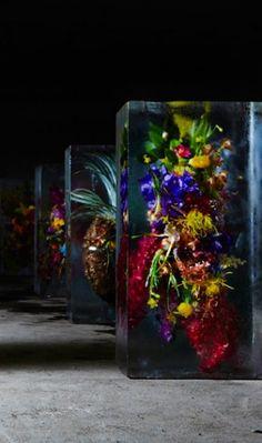 Setting Plants In An Inorganic Space; Azuma Makoto's Iced Flowers
