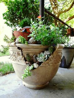 You can use a broken pot effectively