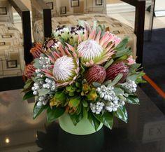 Native Arrangement - Corporate Flowers - Flowers for Everyone - flowers Tropical Flower Arrangements, Vase Arrangements, Tropical Flowers, Exotic Flowers, Purple Flowers, Spring Flowers, Flowers For Everyone, Hotel Flowers, Protea Flower