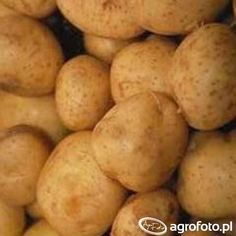 Ziemniaki Marabel