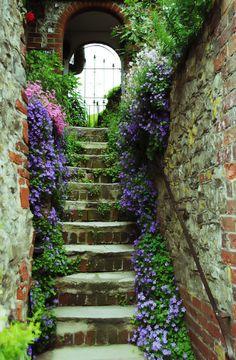 Escalera de flores Garden Steps, Garden Paths, Garden Cottage, Garden Living, Stairway To Heaven, Dream Garden, Stairways, Garden Inspiration, Beautiful Gardens