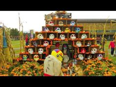 Excellent Dia de los muertos informational video - I show this video to 3rd and 4th grade to reinforce what we've already learned about the holiday's traditions.
