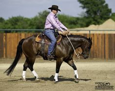 Riding Exercise #8: Vertical Flexion at the Trot  Goal: Whenever you lightly pick up on the reins and add leg pressure at the same time, the horse should immediately soften to the bit, tuck his nose in and create slack in the reins.  More about the exercise: https://www.downunderhorsemanship.com/Store/Search/intermediate