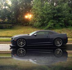 Camaro Iroc, Camaro Car, Chevrolet Camaro, Mustang Gt500, Mustang Cars, Car Photos, Car Pictures, 2014 Camaro Ss, Custom Camaro