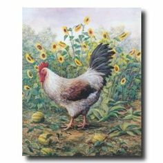 Rooster Chicken Sunflower Animal Picture Art Print Chicken Painting, Chicken Art, Chicken Chick, Picture Frame Art, Picture Wall, Sunflower Print, Sunflower Patch, Sunflower Pictures, Rooster Kitchen