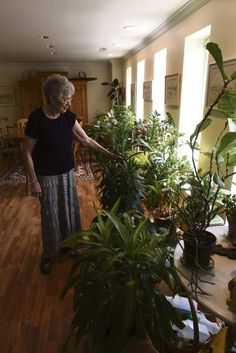 Gerogia Davidson reads poetry to her plants, in turn they keep her company.
