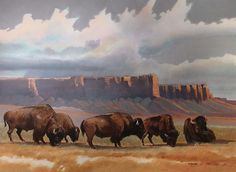 buffalo watercolor | Williams Gallery West Collectibles - Fine Art and Illustration - Donal ...
