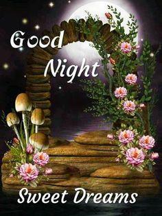 Beautiful Good Night Messages, Funny Good Night Images, Funny Good Night Quotes, Photos Of Good Night, Lovely Good Night, Good Night Gif, Good Night Sweet Dreams, Good Night Moon, Beautiful Morning