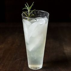 Rosemary Gin Cocktail recipe on Food52