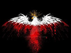 The coat of arm of Poland is white, crowned eagle. Polish National colors are white and red.