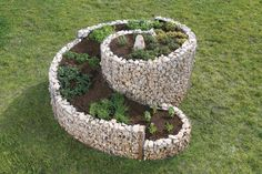 Attarctive Gabion Planter.  Chance to learn about Gabon construction.