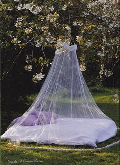 DESDE MY VENTANA: Voile and Lilac