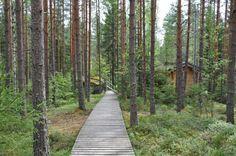 dsc_0217 Railroad Tracks, Finland, Sidewalk, Santa, Side Walkway, Walkway, Walkways, Train Tracks, Pavement