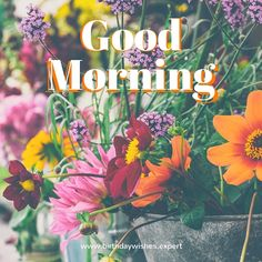 20 Good Morning Images | Birthday Wishes Expert