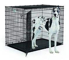 "MidWest Homes for Pets Solutions Series 54"" Double Door *** For more information, visit image link."