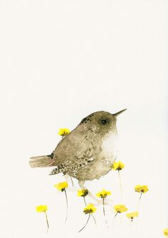 Bird Art Print from Original Watercolor Wren by dearpumpernickel