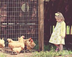 Project 52 - Week 12 / Toddler Outdoor Photography - Farm + Chickens, natural light