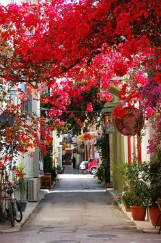 Nafplio, Peloponnese, Greece This stunning street goes well with the whole feel of Peloponnese, Greece. The seaside town loaded with important historical moments is also brimming with an unmatched romantic charm.