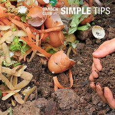 Compost Without a Pile   Garden Club