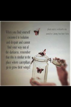 in the time of the butterflies quotes