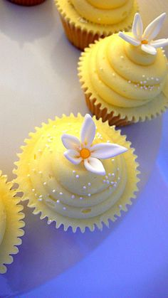 French Vanilla and Lemon Cupcakes with Lemon and Sugar Cream Frosting Topped with Sugar Sprinkles and a Daisey Embellishment Flowers Cupcakes, Daisy Cupcakes, Pretty Cupcakes, Baking Cupcakes, Yummy Cupcakes, Cupcake Cookies, Cupcake Recipes, Lemon Cupcakes, Vanilla Cupcakes