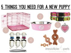 Five Things You Need for a New Puppy via IrresistiblePets.co