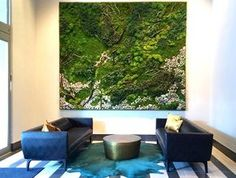 These stunning maintenance-free living walls are made with real, preserved plants. http://www.treehugger.com/culture/artisan-moss-moss-artwork-erin-kinsey.html