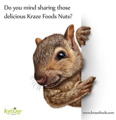 Do you mind sharing those delicious Kraze Food Nuts? Please visit: https://www.krazefoods.com for more information. ‪#‎Krazefoods‬ ‪#‎Raw‬ ‪#‎Organic‬ ‪#‎nongmo‬ ‪#‎Vegan‬ ‪#‎Glutenfree‬ ‪#‎Dairyfree‬
